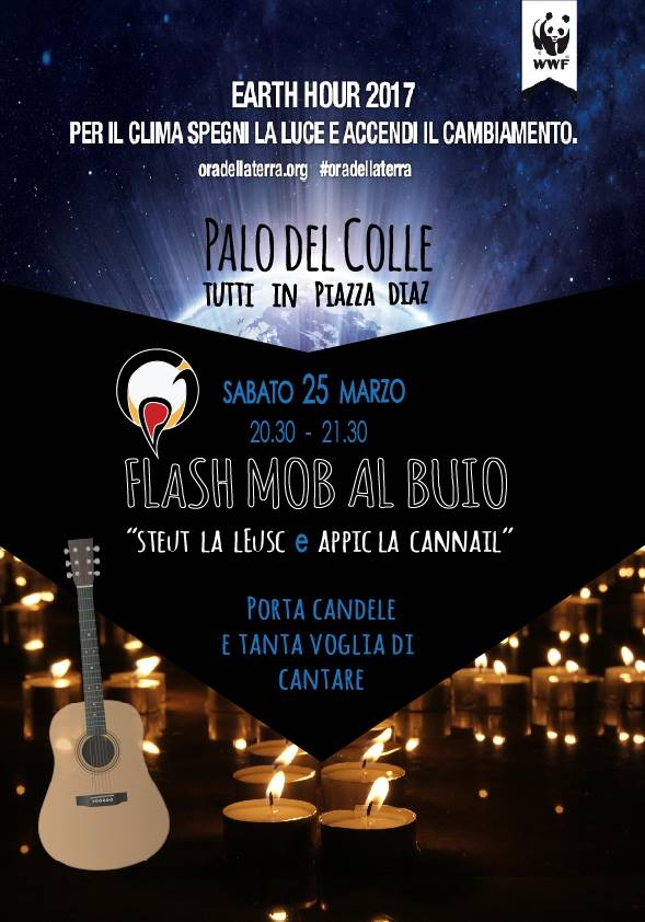 Flash Mob - Steut la leusc e appic la cannail